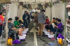 Seoul Herbal Medicine Festival