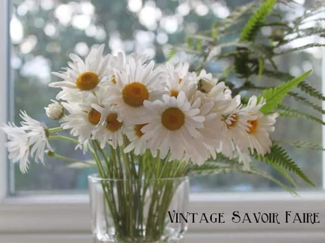 Wild daisies in a glass