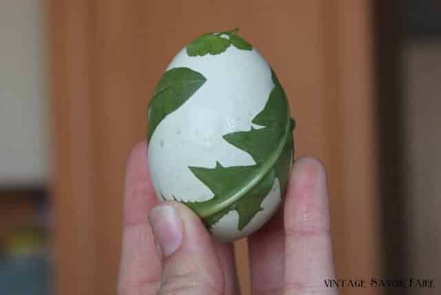 sticking leaves to an egg