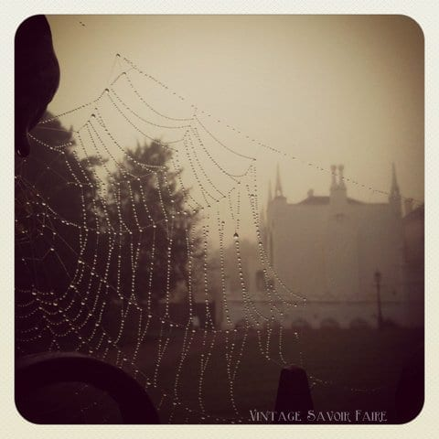 rain and spiderwebs