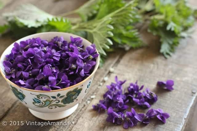VintageAmanda_VioletSyrup-1