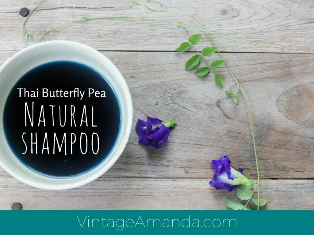 Thai Butterfly Pea Shampoo on VintageAmanda.com